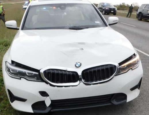 BMWオーナーが選ぶ自動車保険の保険料率と割引制度の特徴